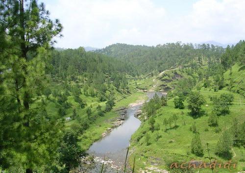 Речка в окрестностях Альморы, Кумаон