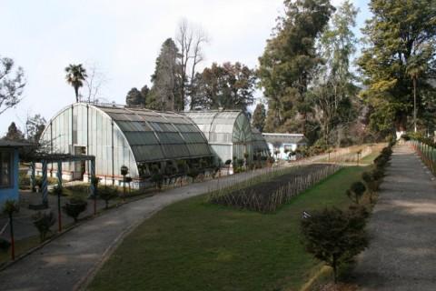 Ботанический сад Ллойда