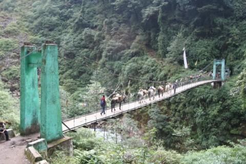 Сикким. Подвесной мост