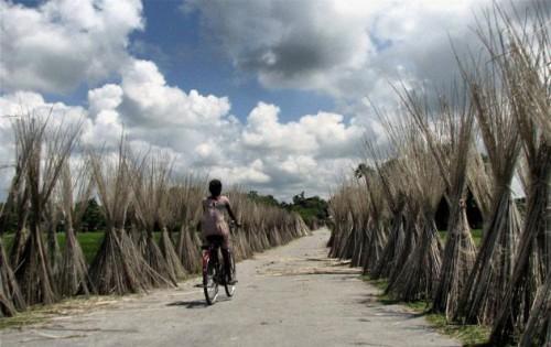 Силигури, западная Бенгалия, фото www.thehindu.com