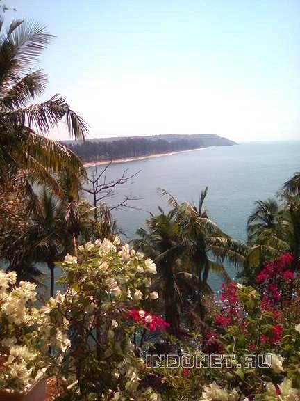 Go to Goa