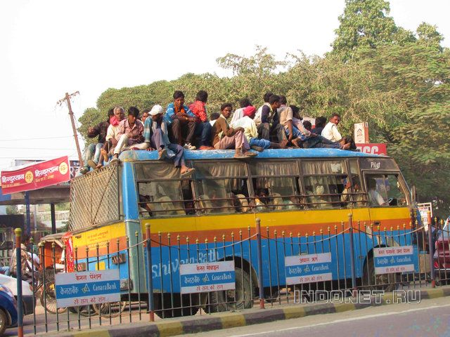 Самоучитель по Индии. Автобусы