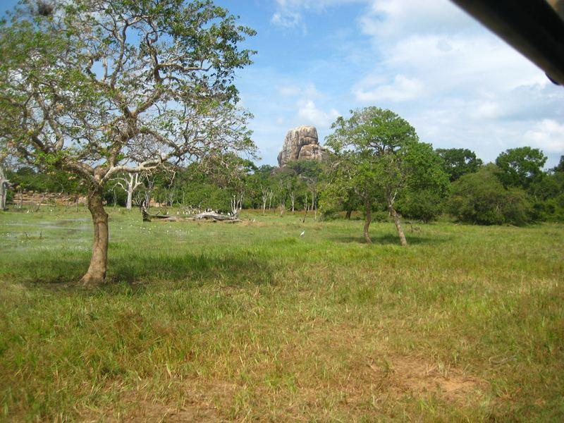 Ландшафты Шри Ланки