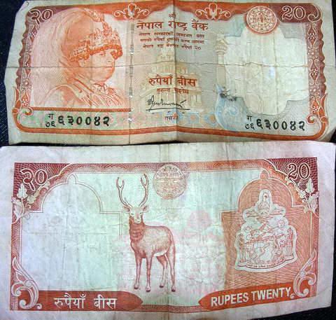 20 неапальских рупии