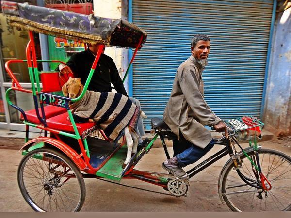 На улицах Чаури Базара