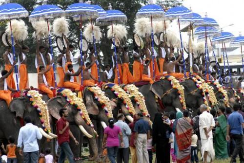 Слоны. Национальный фестиваль животноводства в Тируванантхапураме. Фото S. Mahinsha