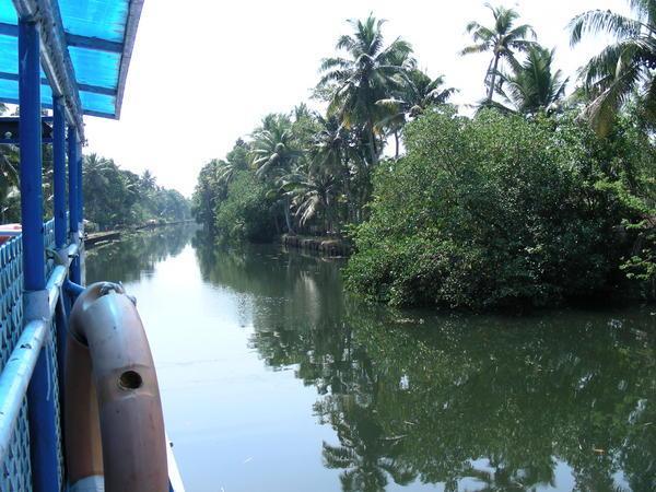 Керала бэквотерс - керальские внутренние воды, фото с кораблика из Аллепи